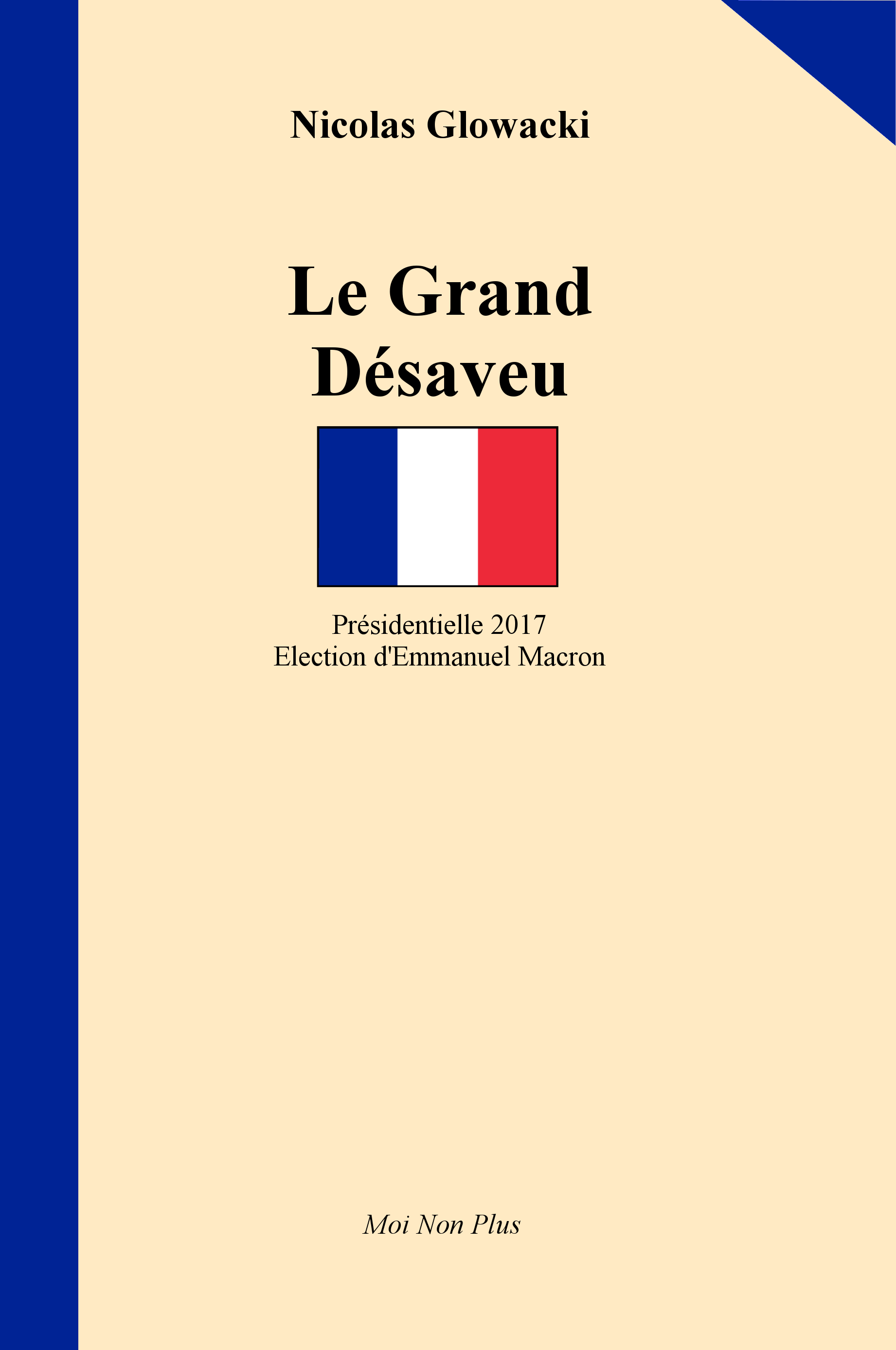 "Couverture de ""France 2017 - Le Grand Désaveu"" - Éditions Moi Non Plus"